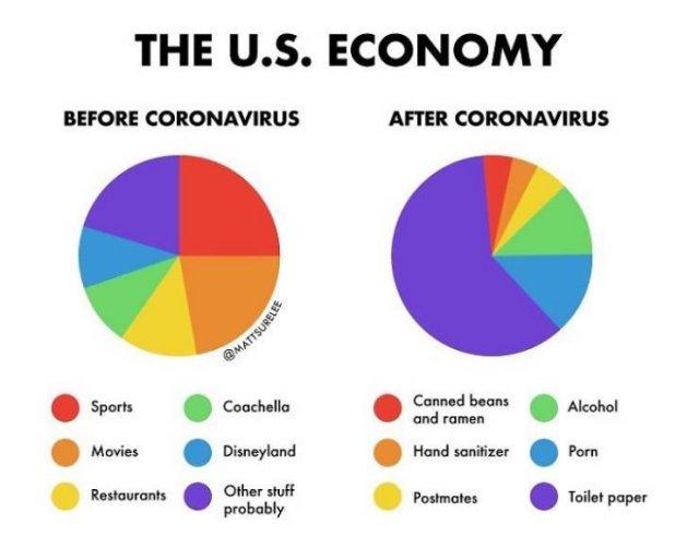 Coronavirus Graphs (30 pics)