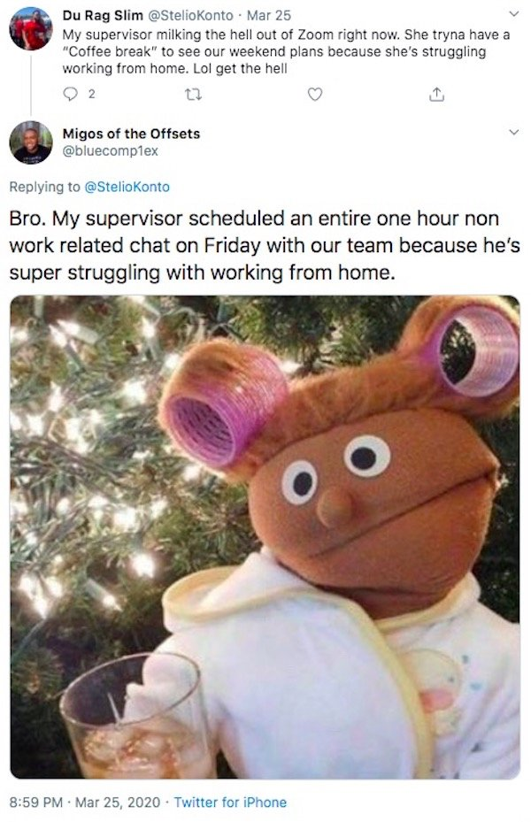 Working From Home Tweets (30 pics)