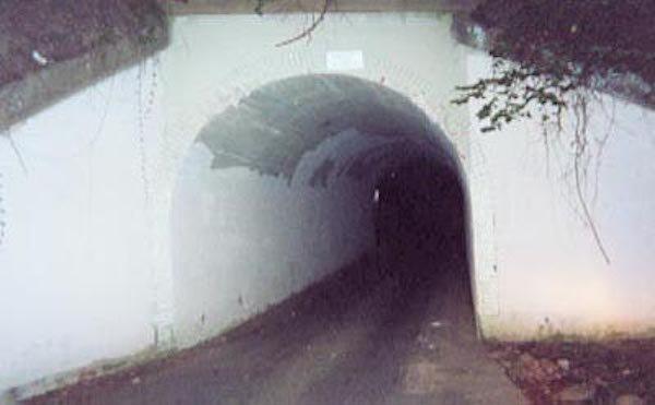 Wikipedia Rabbit Holes (22 pics)