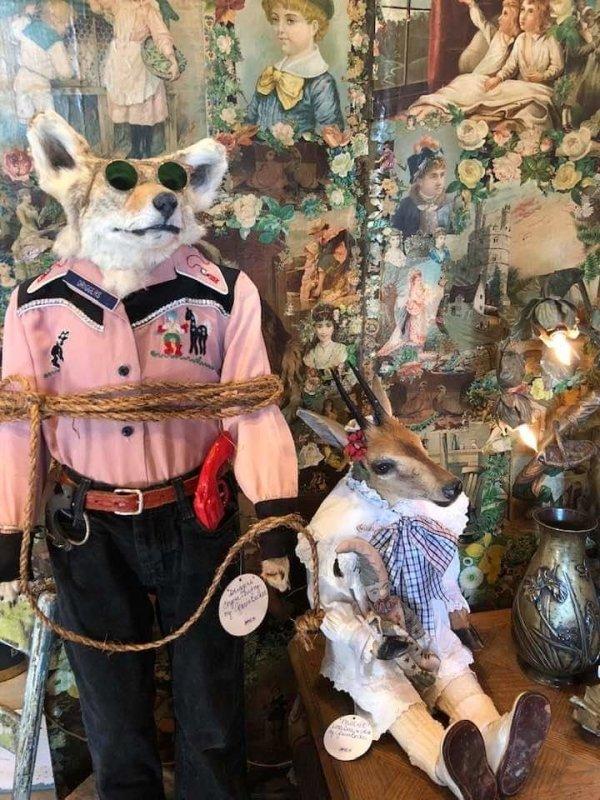 Thrift Shop Treasures (32 pics)