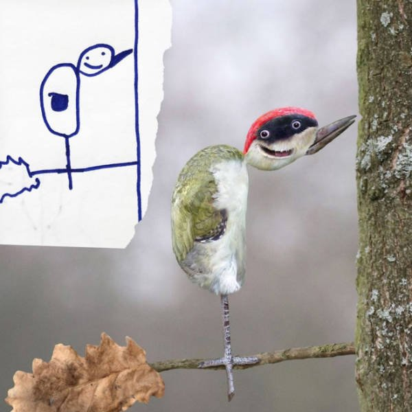 Dad Turns His Son's Doodles Into Art (21 pics)