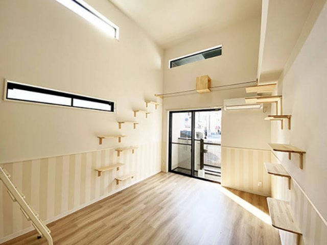 Japanese Apartments For Human And His Cat (16 pics)