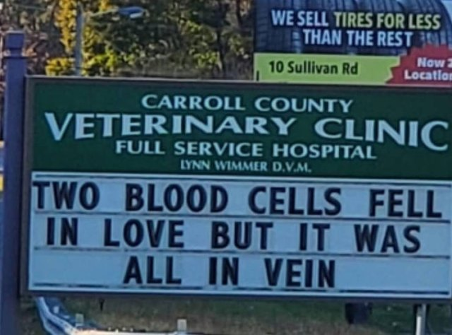 Vet Clinic Jokes (30 pics)