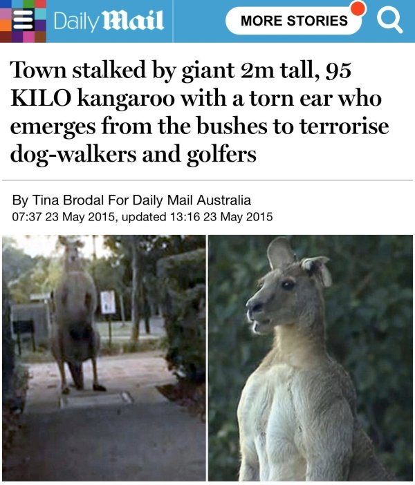 Giant Things (32 pics)