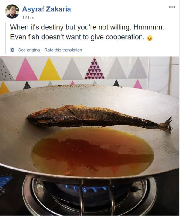 Cooking Gone Wrong (29 pics)