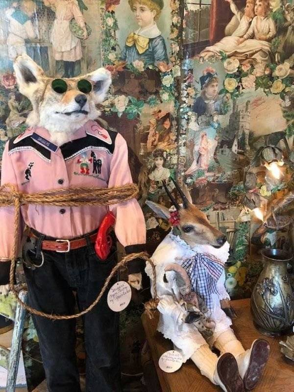 Thrift Shops Treasures (58 pics)