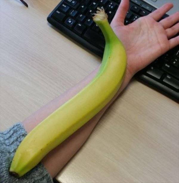 Giant Fruits And Vegetables (31 pics)