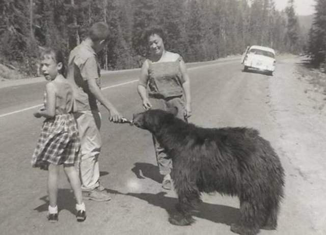 Great Old Family Photos (40 pics)