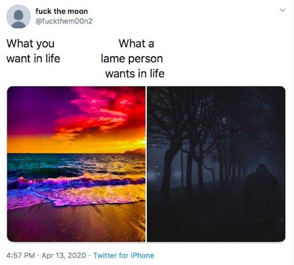 #f the moon Tweets (32 pics)