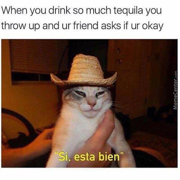 ¡Olé! Cinco De Mayo Memes (36 pics)