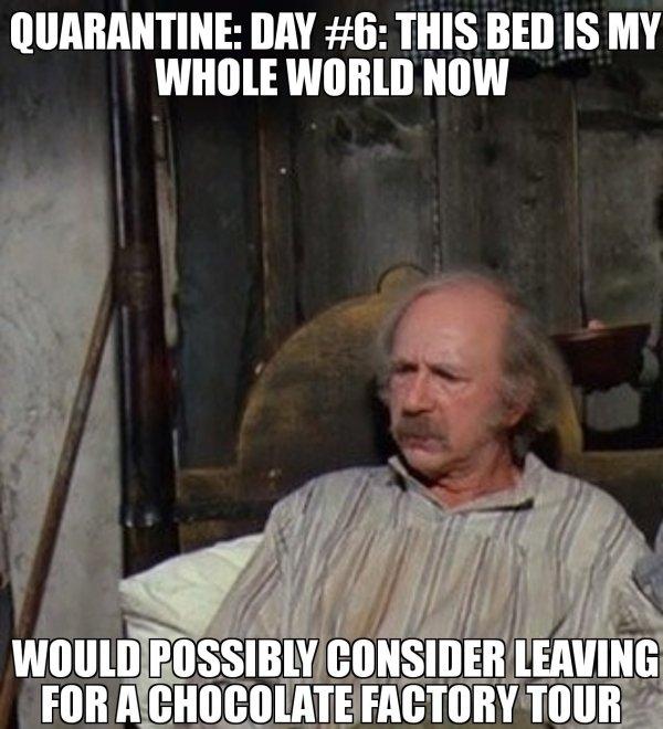 Quarantine Memes (33 pics)