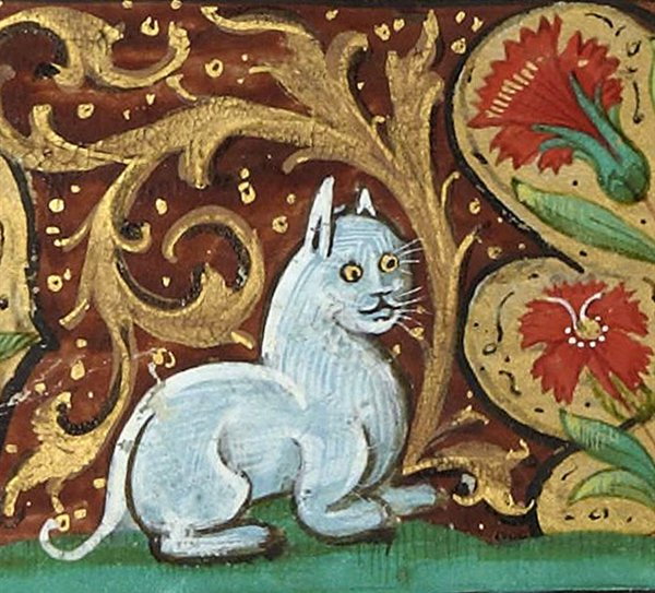 Medieval Cats (23 pics)