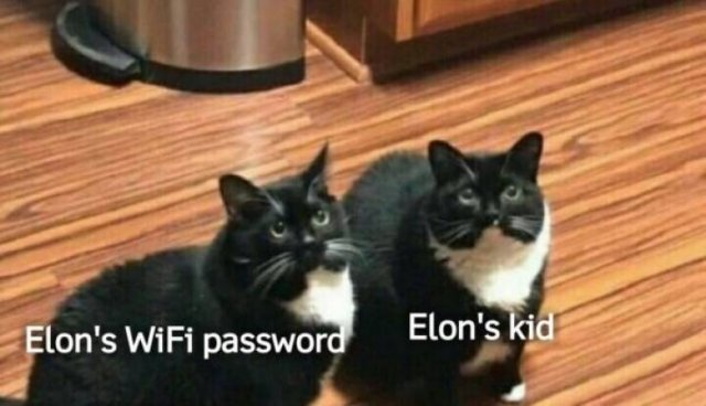 Internet Keep Trolling Elon Musk For His Baby's Name X Æ A-12 (32 pics)