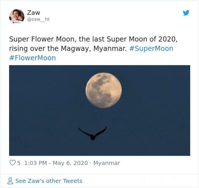 Beautiful May's Flower Moon (27 pics)