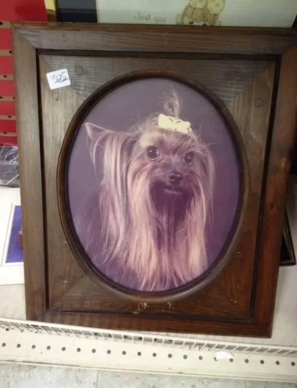 Thrift Shops Treasures (63 pics)