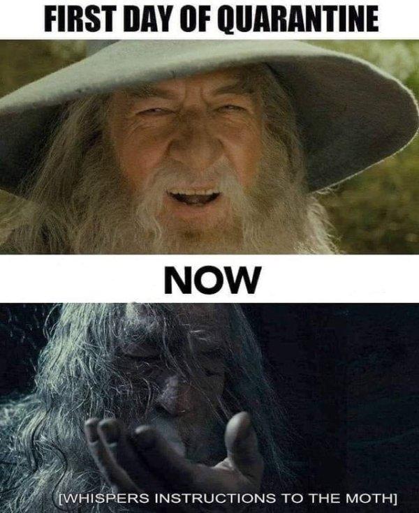 LOTR Memes (32 pics)