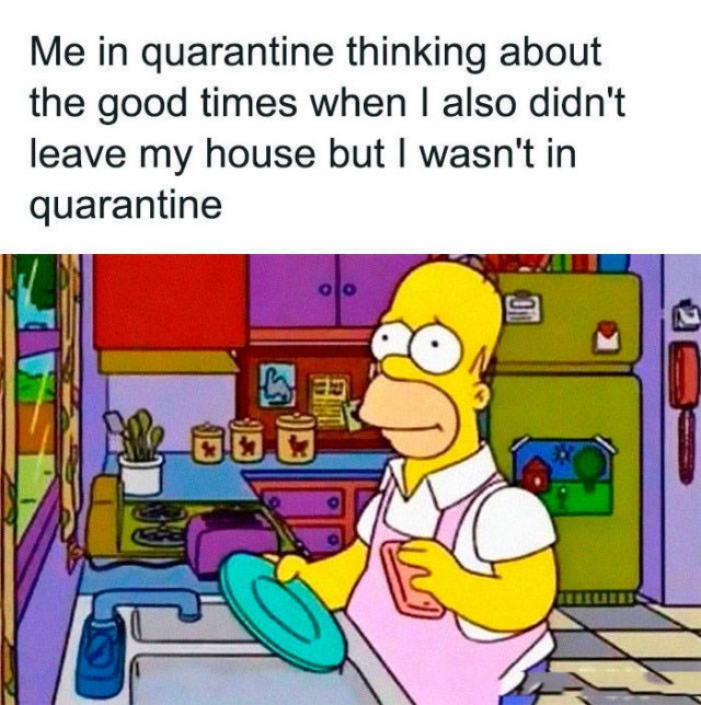 Quarantine Jokes (34 pics)