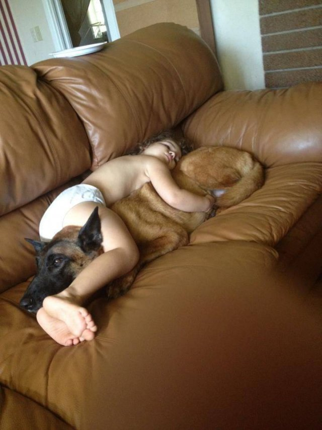 No Words Needed For These Pictures (53 pics)