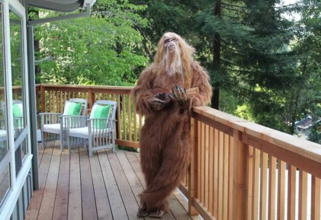 Bigfoot's Selling His House (16 pics)