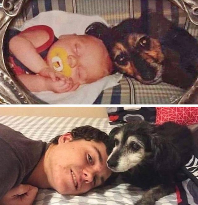 People Recreate Their Old Photos (20 pics)