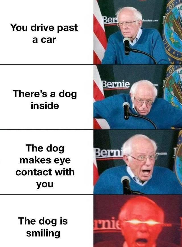 Wholesome Memes (42 pics)