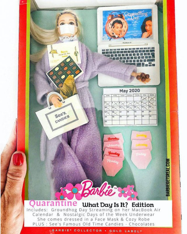 Quarantine Barbies (12 pics)