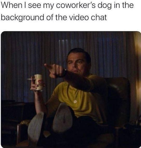Quarantine Memes (35 pics)