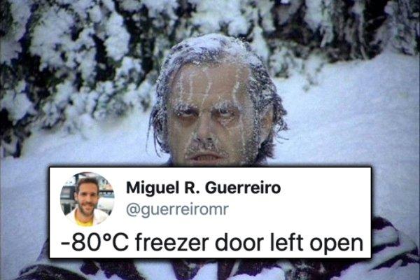 Job Horror Tweets (29 pics)