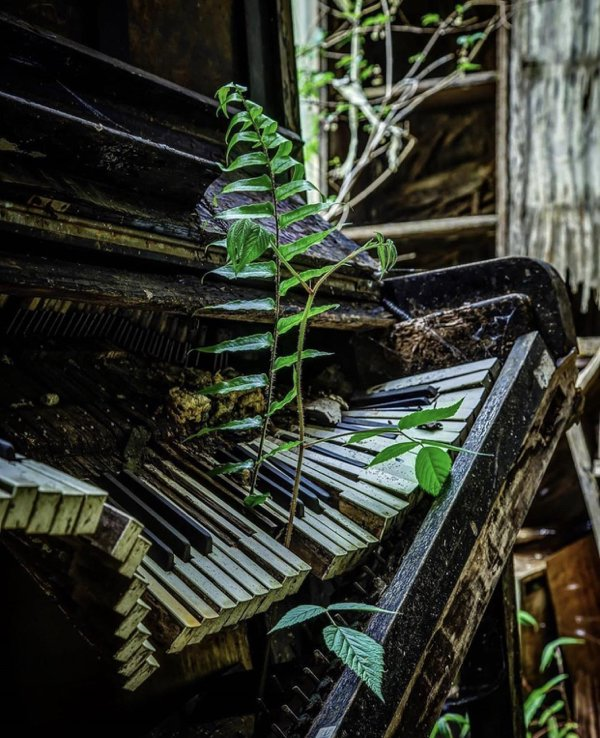 Abandoned Places (34 pics)