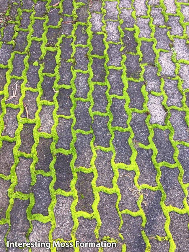 Acid Picdump. Part 1 (93 pics)
