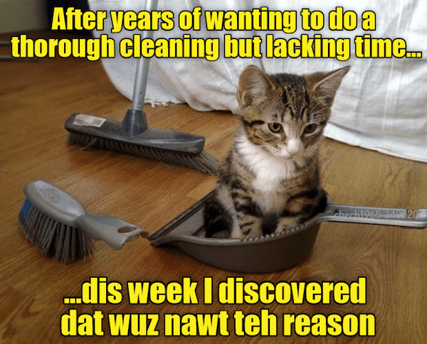 Memes About Cleaning (39 pics)