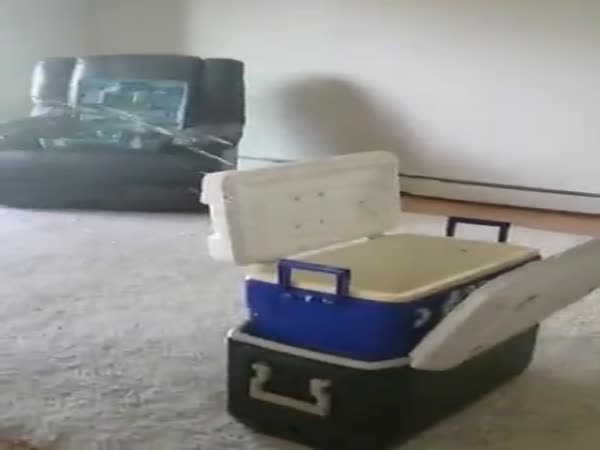 What Could Go Wrong When Mounting The TV