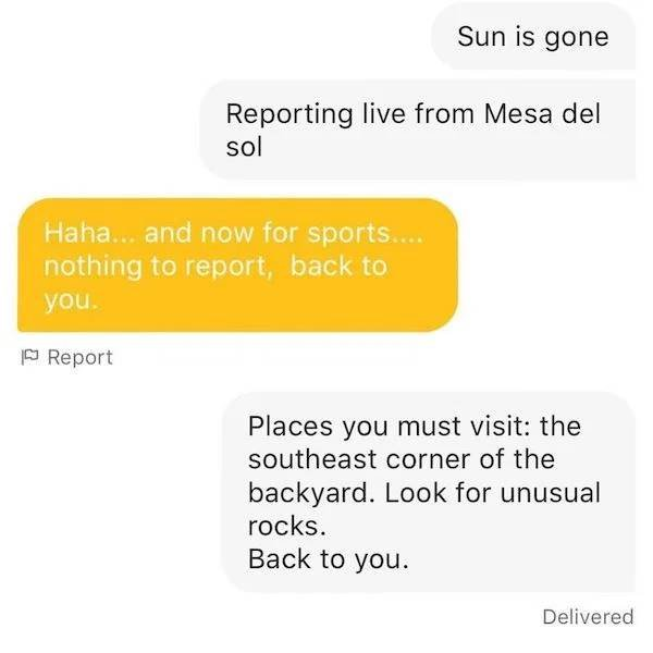 Dating Apps Messages (24 pics)