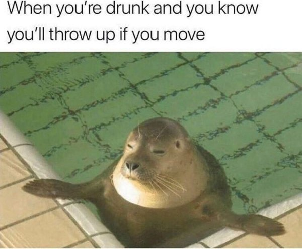 Alcohol Memes And Pictures (26 pics)