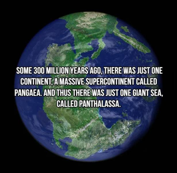Facts About Earth (20 pics)