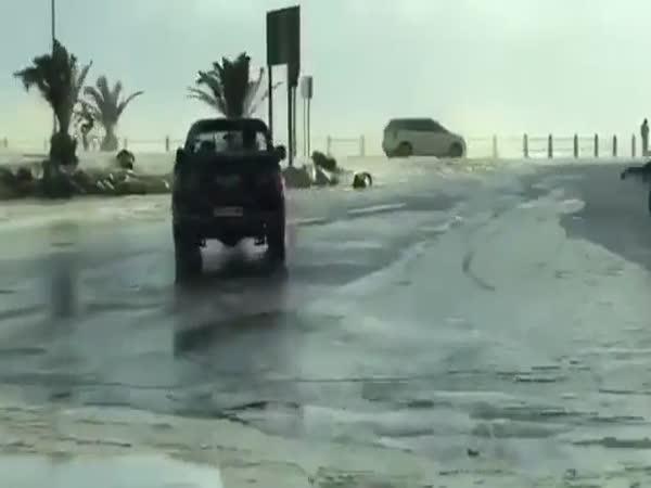 Nature's Car Wash