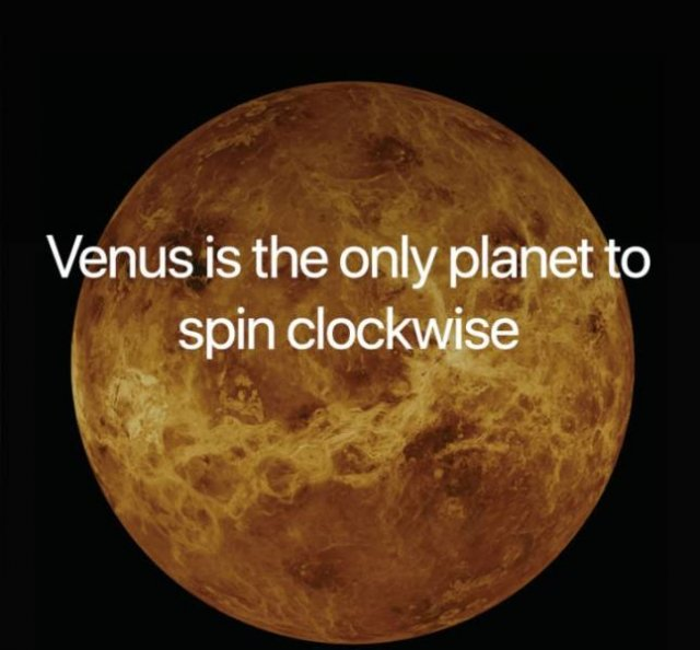 Science Facts (21 pics)