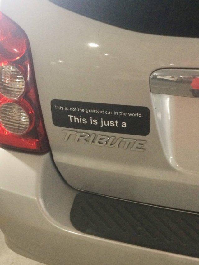 Bumper Stickers (19 pics)