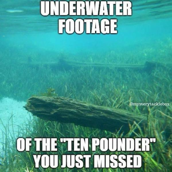 Fishing Memes (24 pics)
