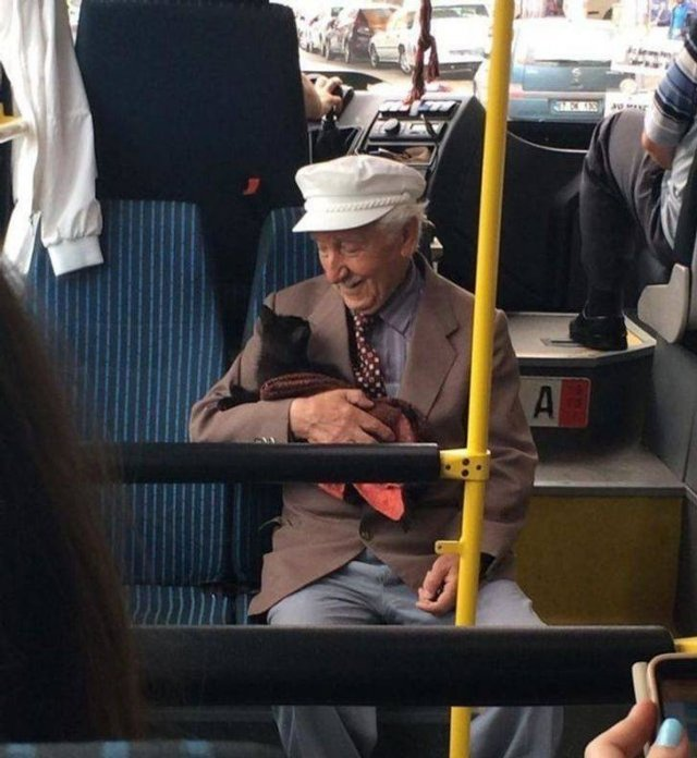 Wholesome Stories (15 pics)