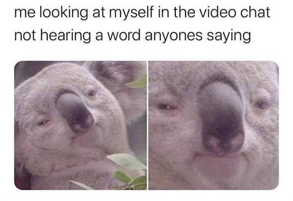 Hilarious Memes (36 pics)