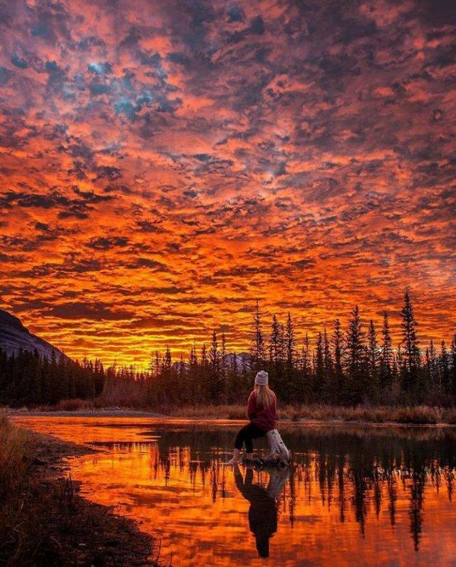 Amazing Photos (20 pics)