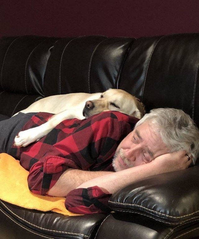 These People Refused To Have Pets (50 pics)