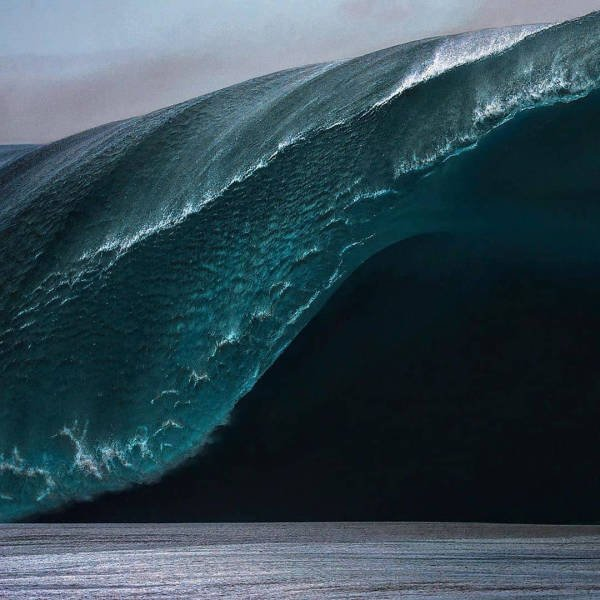 Ocean's Beauty (55 pics)