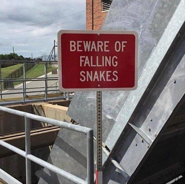 Funny Signs (34 pics)