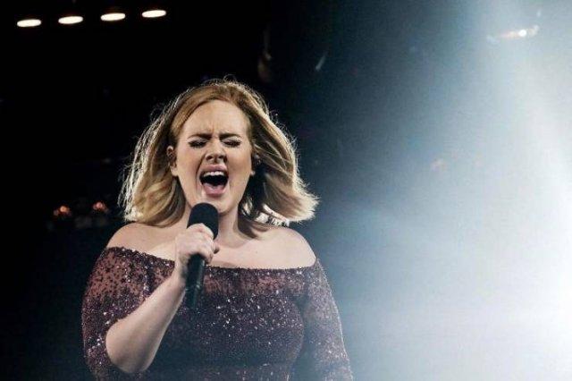 Adele's Amazing Weight Loss (17 pics)