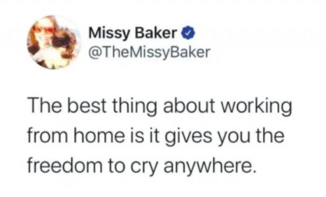 Work From Home Memes (28 pics)
