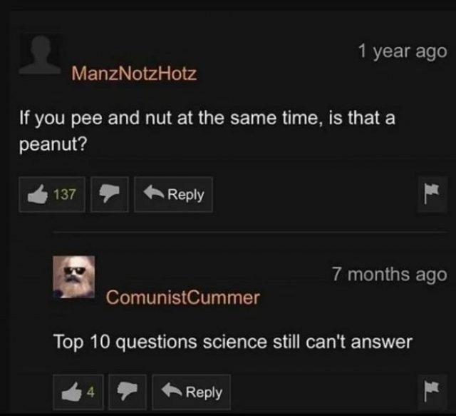 Pornhub Comments (33 pics)