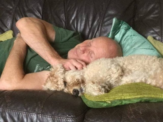 These People Refused To Have Pets (29 pics)