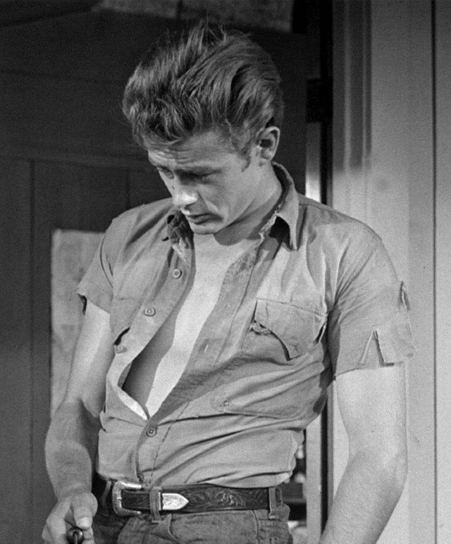 The Standard Of Male Beauty In Cinema: From The 1950's Till Today (39 pics)
